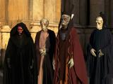 Оккупационный совет Торговой Федерации