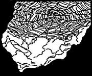 Purella Web EGPM