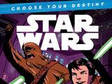 Выбери свою судьбу: Приключение Хана и Чуи