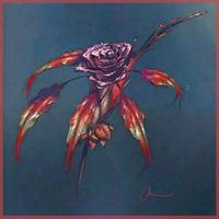 Nebula orchid painting SWG