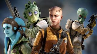 Ico species