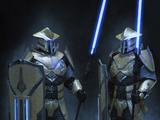 Рыцари Закуула
