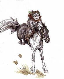 Endor pony