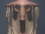 Зеффо (раса)
