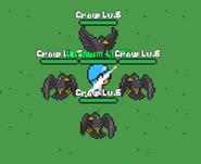 Crow surrounding