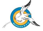 Bermudarugby