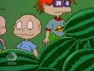 Rugrats - Dil We Meet Again 208