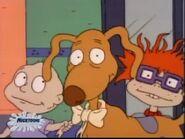 Spike the Wonder Dog 85