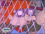 Rugrats - Moose Country 300