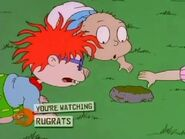 Rugrats - Baking Dil 31