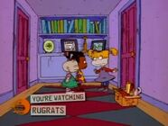 Rugrats - A Very McNulty Birthday 24