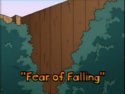 Fear of Falling Title