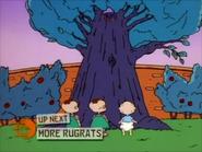 Rugrats - The Family Tree 418