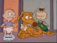 Spike the Wonder Dog 74