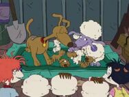 Rugrats - Bow Wow Wedding Vows 513