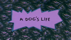 A Dog's Life title card