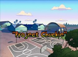 All Grown Up - Project Chuckie