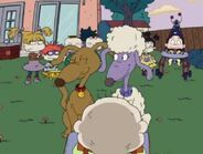 Rugrats - Bow Wow Wedding Vows 239