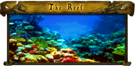 File:Port - The Reef.png