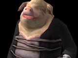 Pig Imp