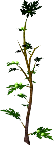 File:Mournberry bush.png