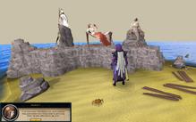 Player speaks to mermaid