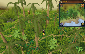 Scan clue Kharazi Jungle south-east of water pool