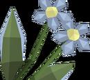 Salve nettles (item)