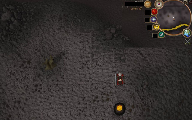 File:Compass clue Wilderness south of Mage Arena.jpg