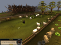 The penguins in the sheep field.png