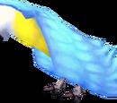 Azure Parrot