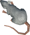 Cave mouse detail.png