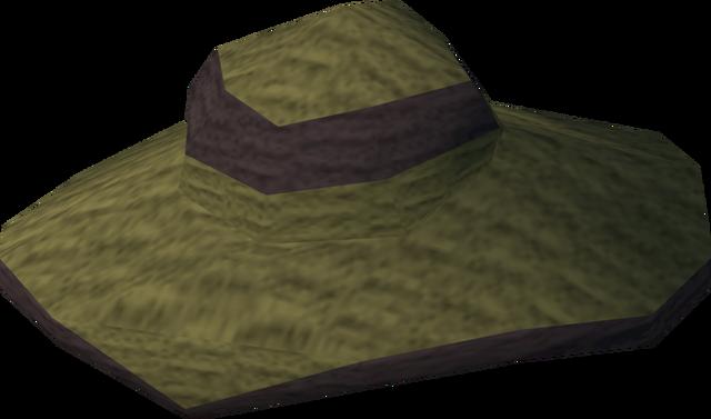 File:Moonclan hat detail.png