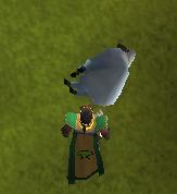 Jogador matando ovelha