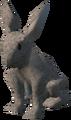 Rabbit (Vinesweeper) 3.png
