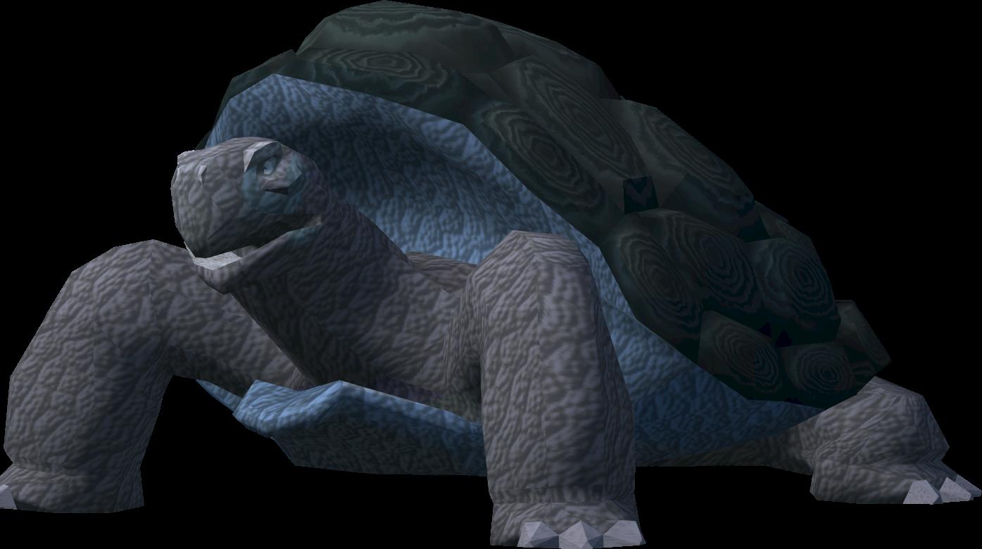 War Tortoise Familiarisation Runescape Wiki Fandom Powered By