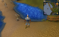 Compass clue Falador south-west of Crafting Guild.png