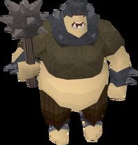 Ogre city guard