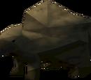 Rock critter