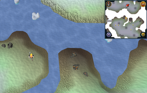 Scan clue Fremennik Isles just west of mining site on southeastern snowy island
