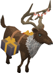Friendly reindeer