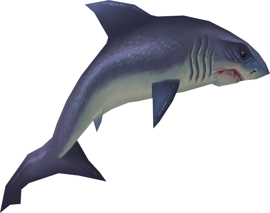 Raw great white shark runescape wiki fandom powered by wikia