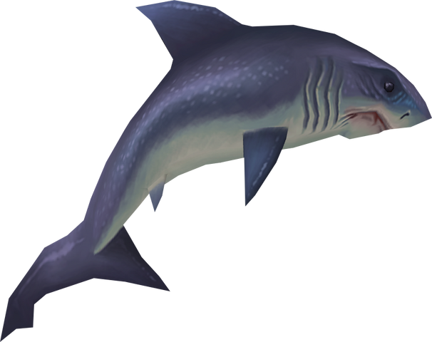 File:Raw great white shark detail.png