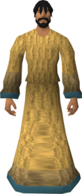 Robe of Elidinis equipped