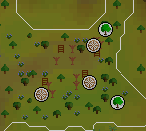 Tree gnome stronghold spinningwheel