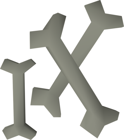 File:Dagannoth bones detail.png