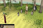 Penguin Capture