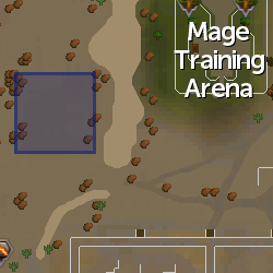 Demon Flash Mob (Duel Arena) location