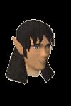 Elf tracker detail