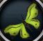 Green soporith moth detail